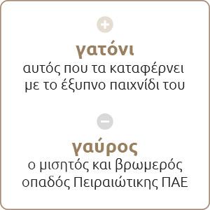 paokeisaigr_noimatiki_B03