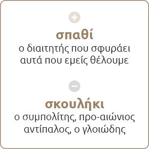 paokeisaigr_noimatiki_B18
